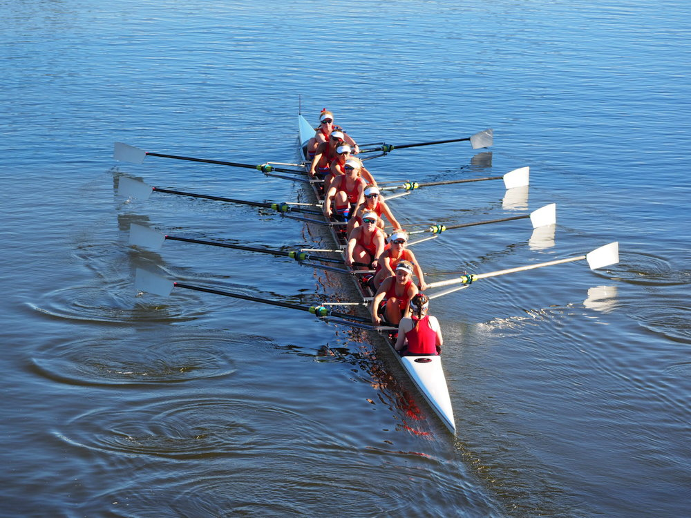 Rowing-Girls-Eights-2016.jpg