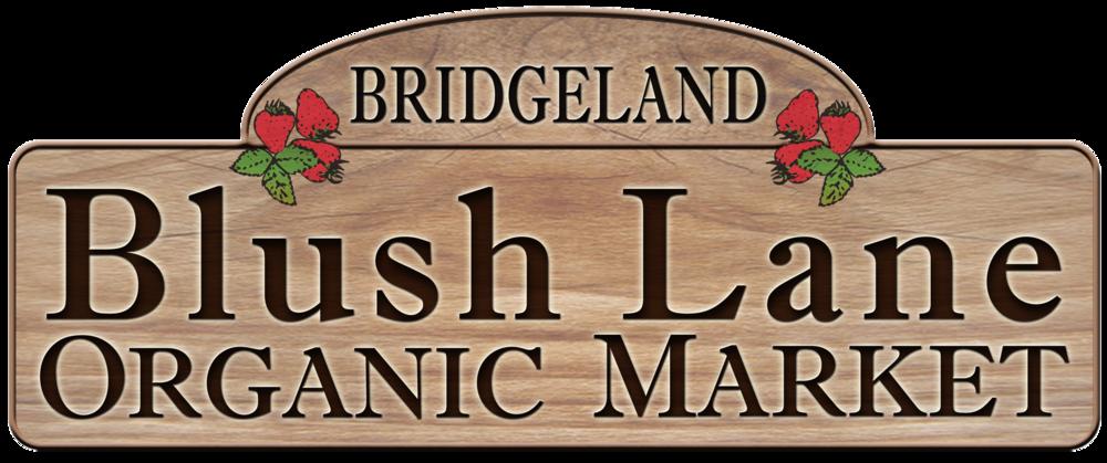 Bridgeland Logo.png