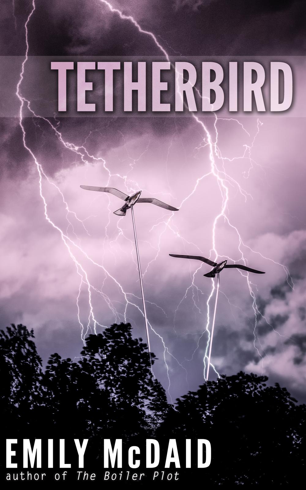 Tetherbird_ebook.jpg