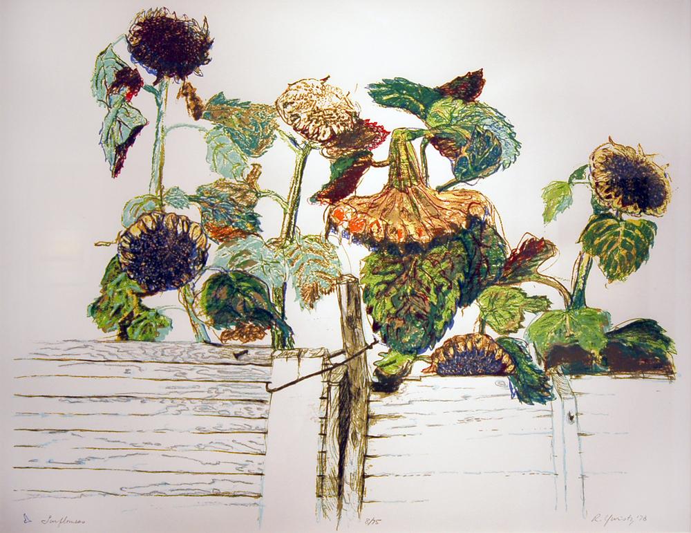 Russel Yuristy, Sunflowers
