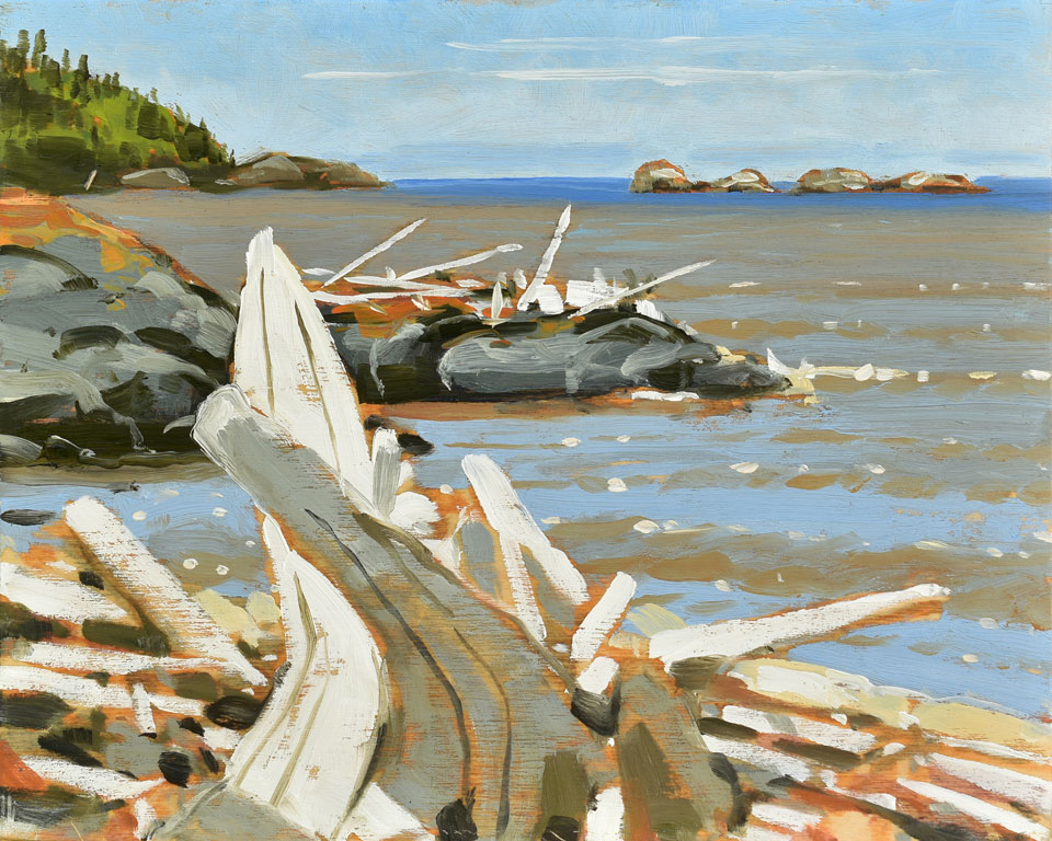 Pukuskwa Driftwood Lake Superior, 2016, oil on panel, 8 x 10