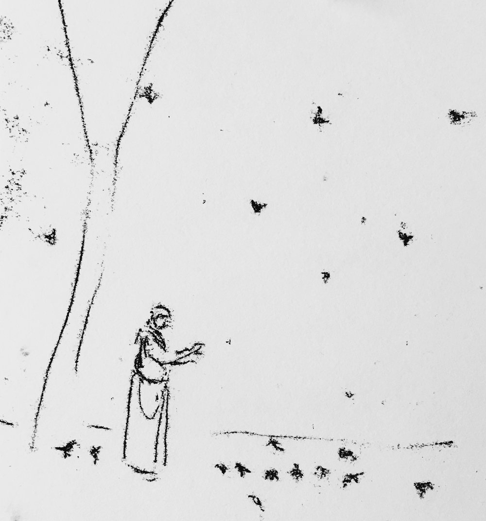 St. Francis gives sermon to birds. Version 1	Monotype	2016	8	10	.JPG