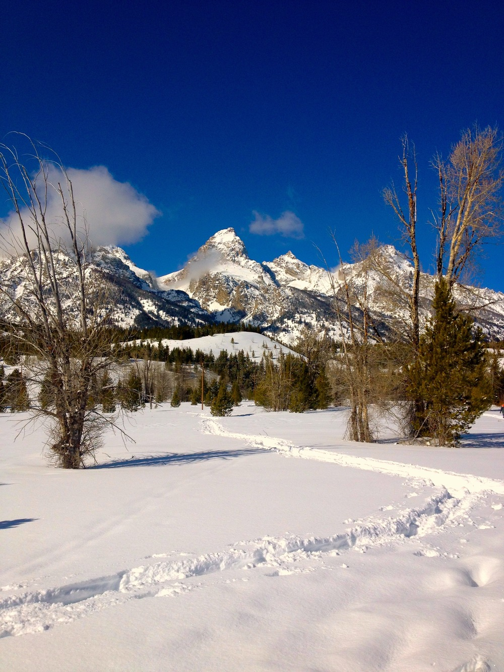 Taggert Lake Trailhead, Grand Teton National Park