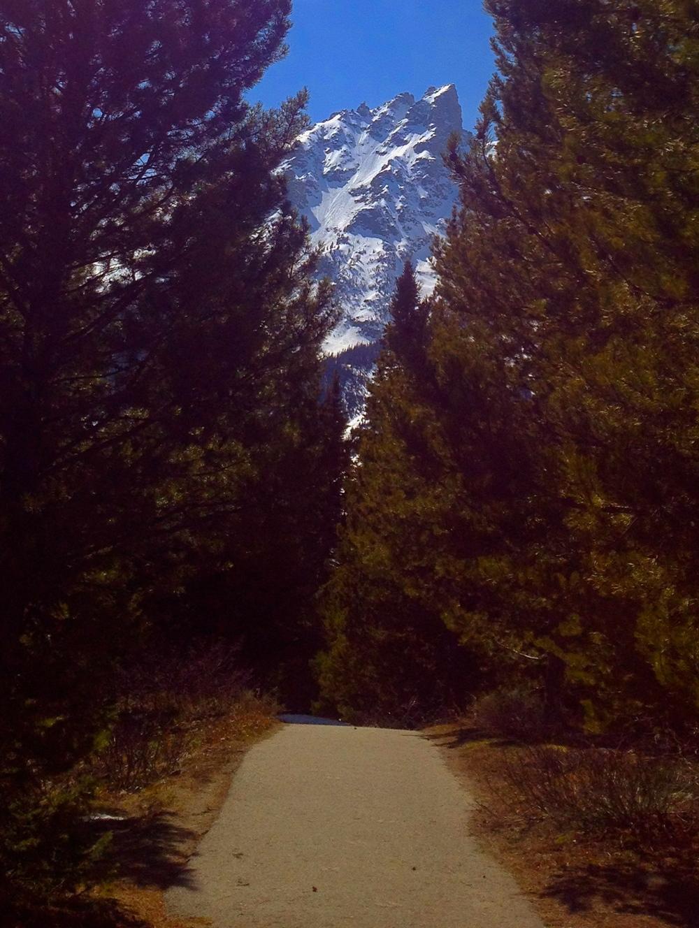 Trail to Jenny Lake