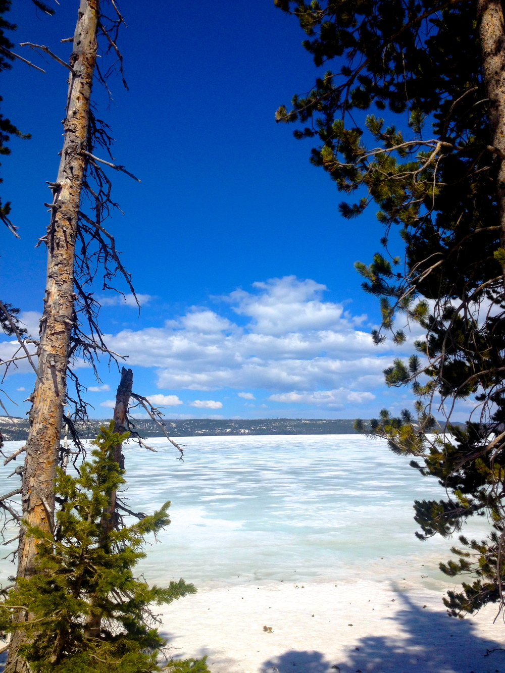 Lake Lewis, Yellowstone National Park