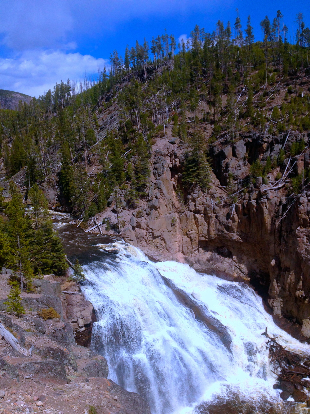 Gibbons Falls, Yellowstone National Park
