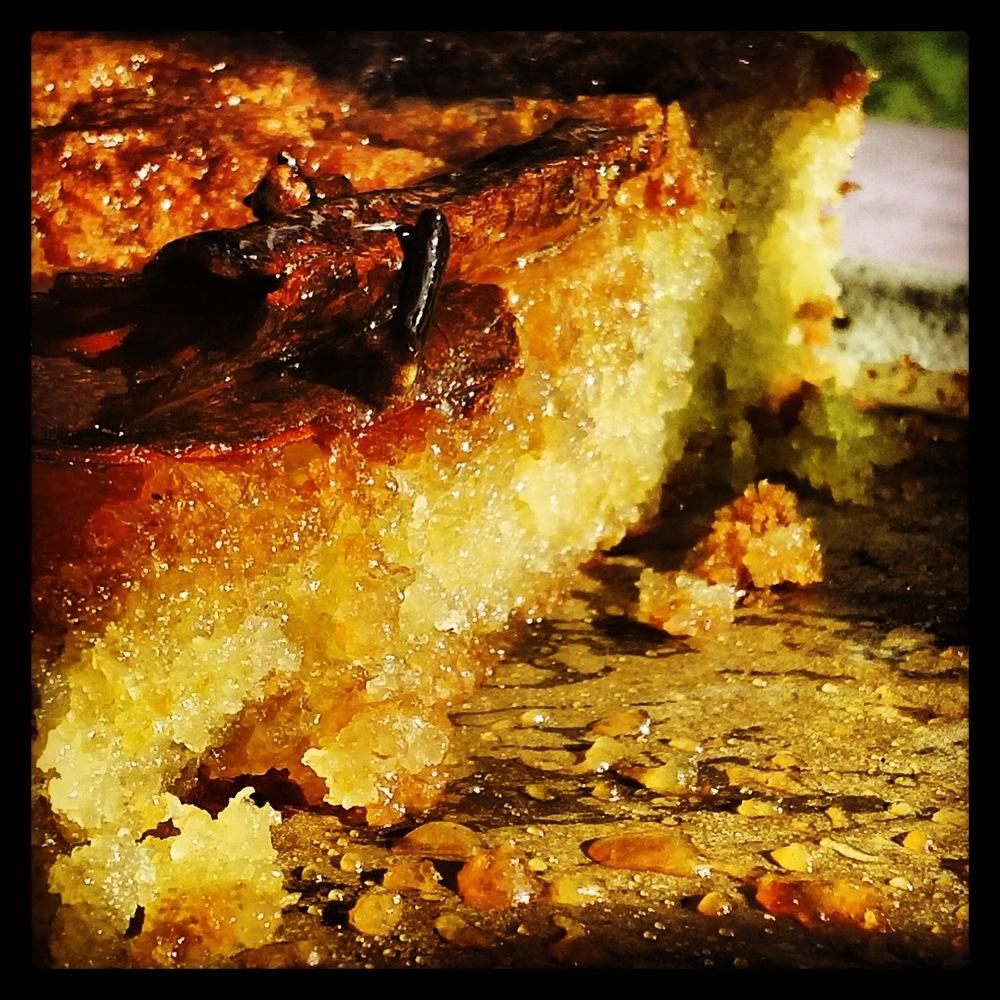 Tunisian Orange Cake Demolished LunchWithJuju 7.jpg