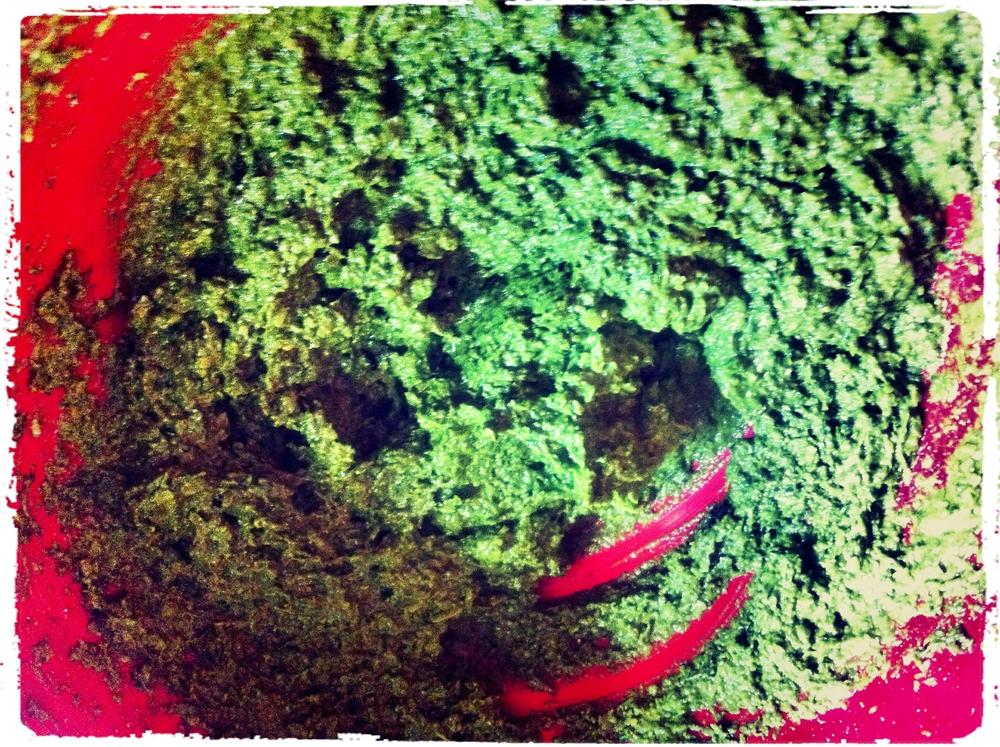Pesto LunchWithJuju 6.jpg