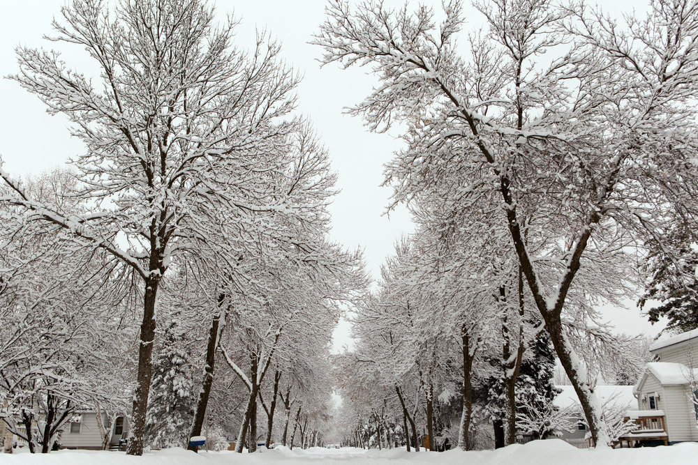 Residential streets of small town International Falls MN after a winter storm