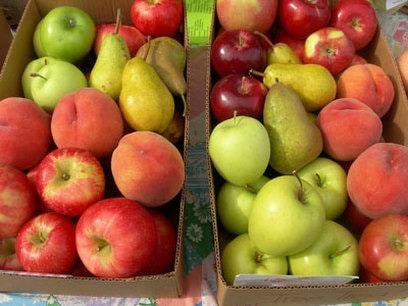 fruitboxes.jpg
