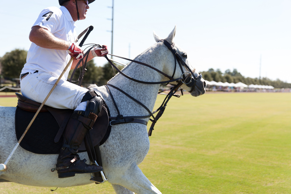 Polo at the Point | Garden & Gun Magazine | Point Clear, Alabama | Todd Douglas Editorial Photographer
