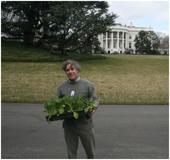 Peter Hatch joins White House chefs before ceremonial garden planting, March 30, 2011. Photo by William Yosses