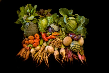 Cornucopia from Monticello Vegetable Garden, November, 2011. Photo by Robert Llewellyn, courtesy of Thomas Jefferson Foundation