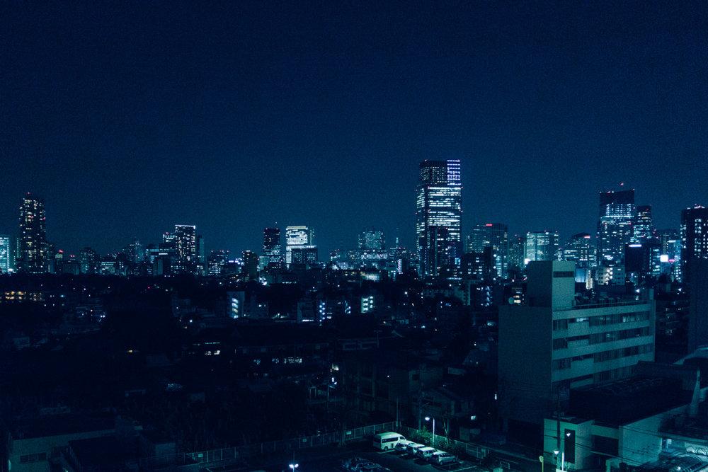 davislam.com_2016-02_tokyo-2.jpg