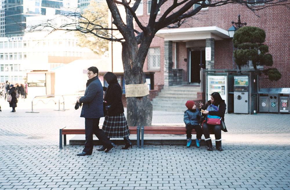 davislam.com_2016-01-02_korea-13.jpg