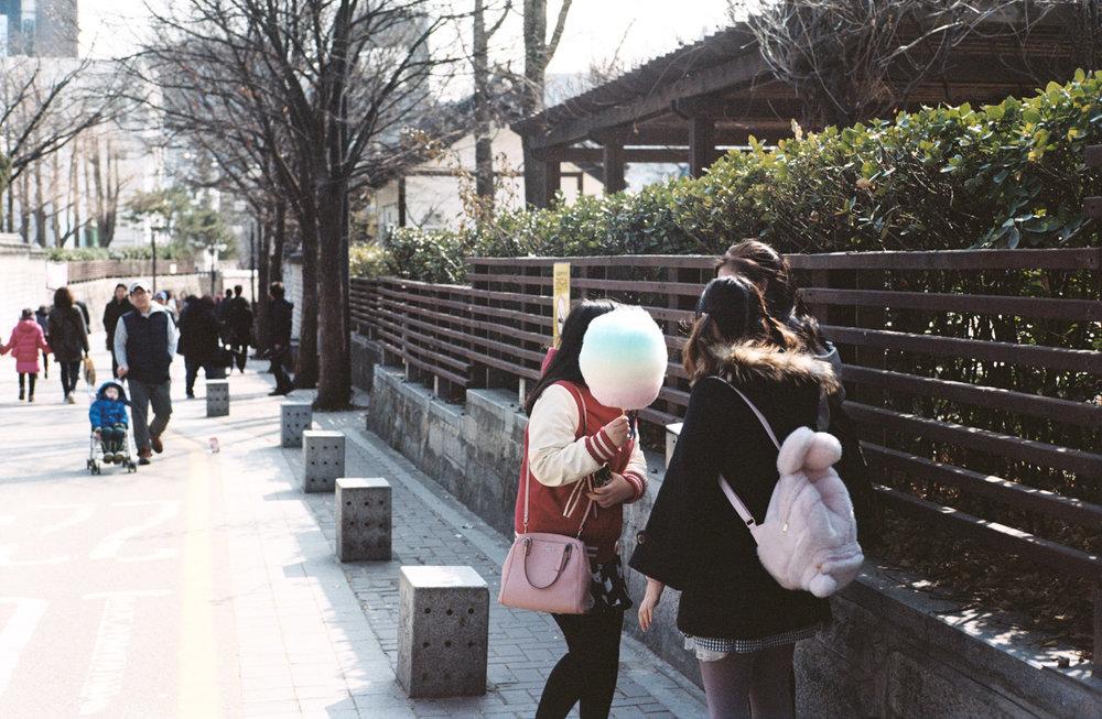 davislam.com_2016-01-02_korea-39.jpg