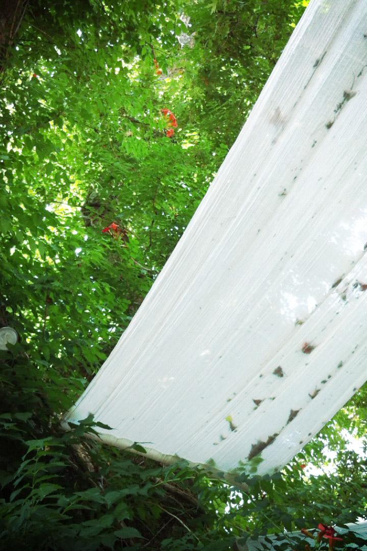 davislam.com_2012-06_creta-7.jpg