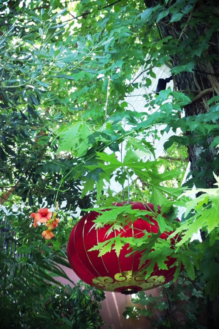 davislam.com_2012-06_creta-6.jpg