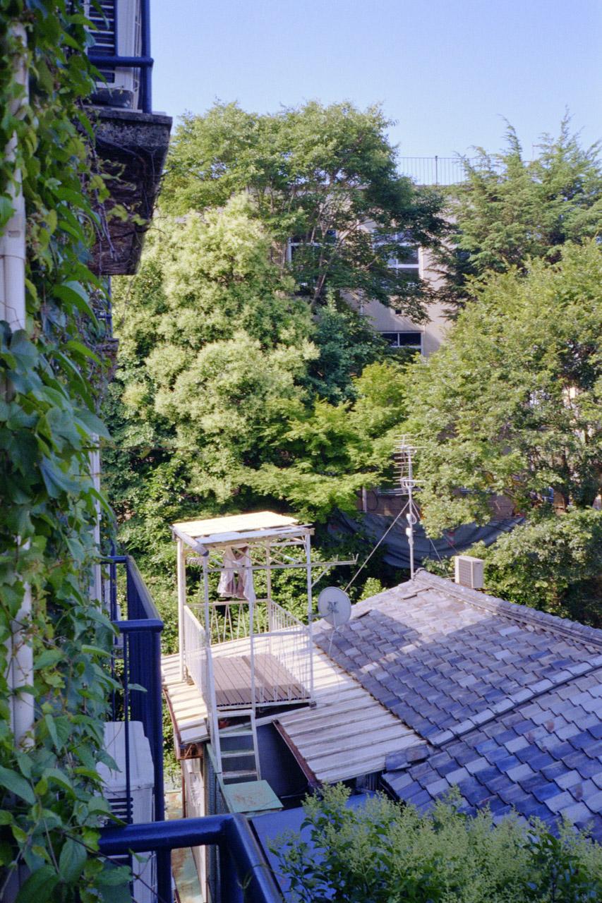 davislam.com_2018-06_kyoto-osaka-2.jpg