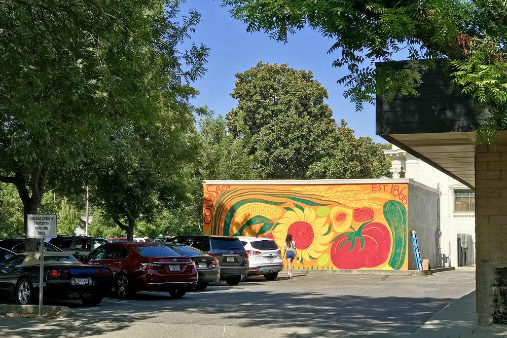 Colusa new mural 81618-5.jpg