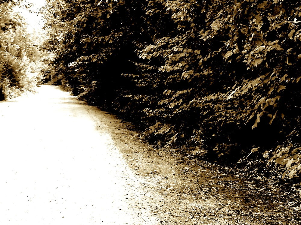 road view from maine edited.jpg