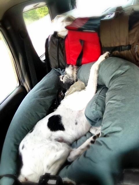 Day 1: Road Trip Recap