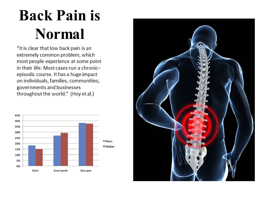Hoy et al, The epidemiology of low back pain.  Clinical Rhematology 2010.  https://www.researchgate.net/publication/51211518_The_Epidemiology_of_low_back_pain