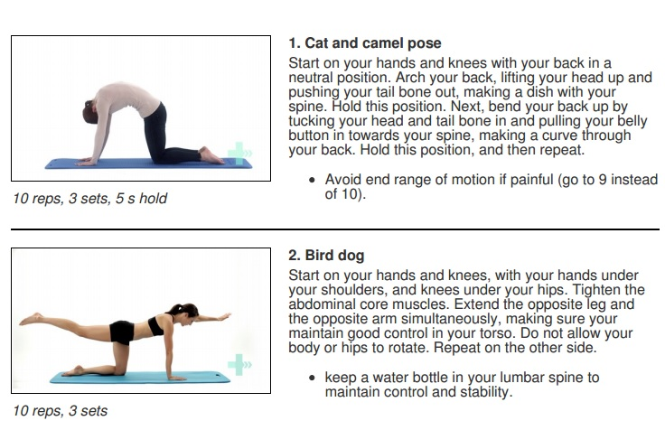 How do you get rid of sciatica sports spine motor control or core exercises sciox Images