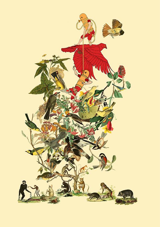birdmixleft copy.jpg