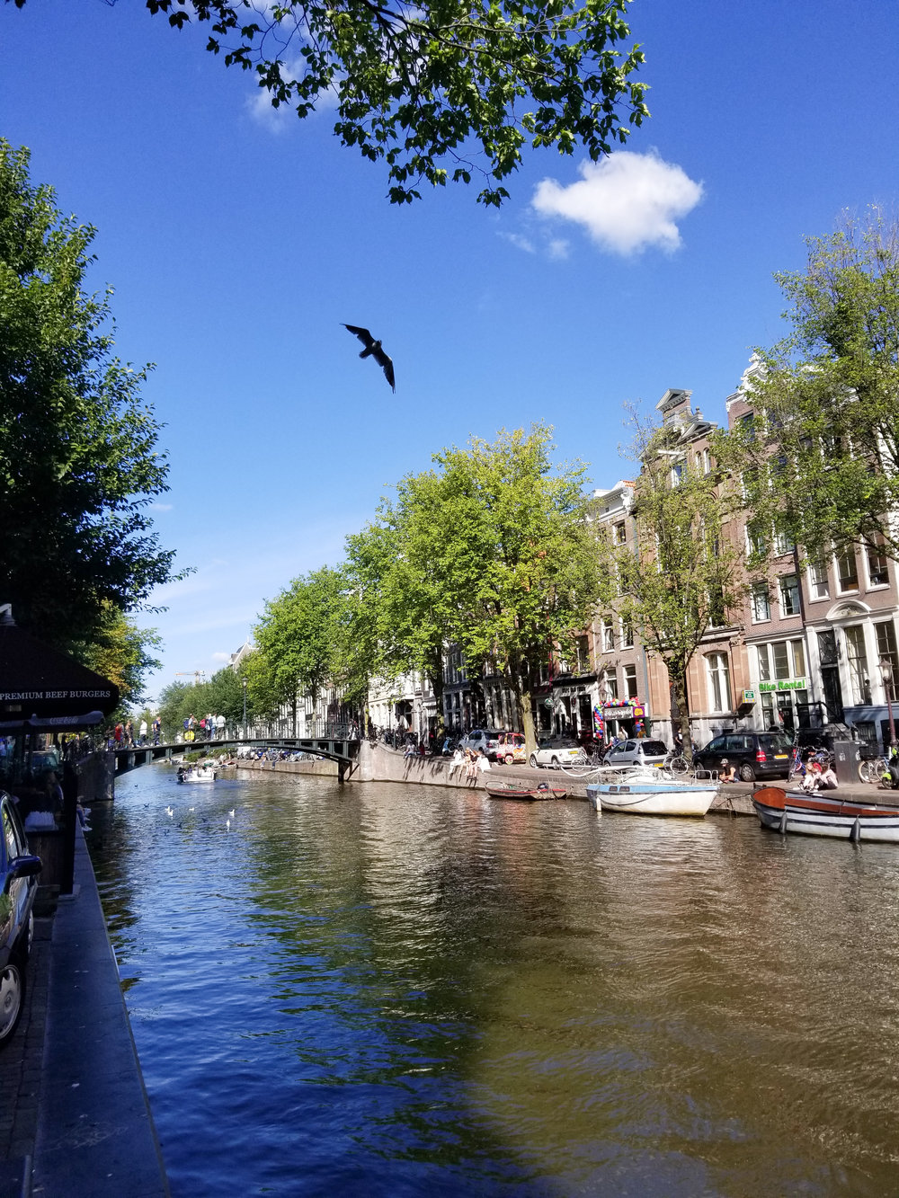 Amsterdam(low)-10.jpg
