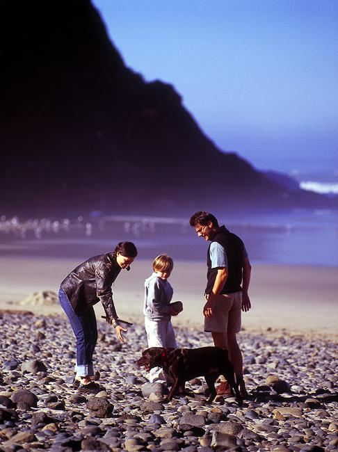beached1.jpg