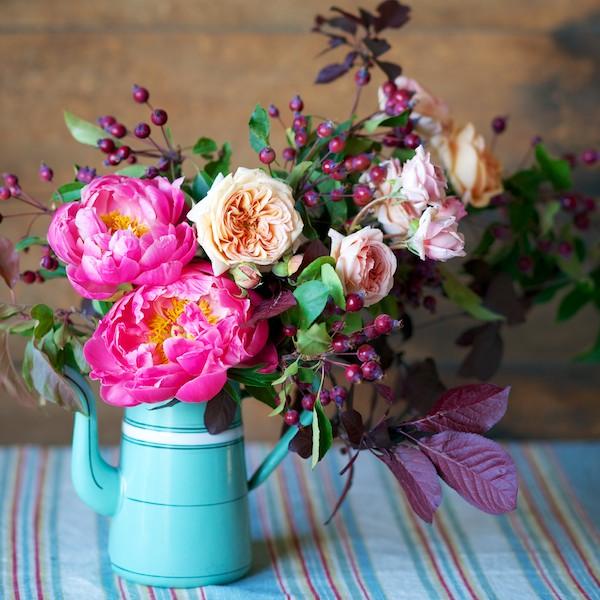 tulipina.com / Kiana Underwood