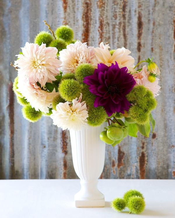 Kiana Underwood / tulipina.com
