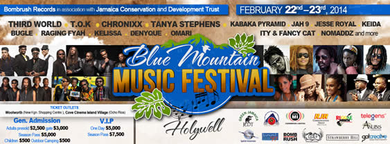 Blue_Mountain_Music_festival_Third_World_Bunny_Rugs.jpg