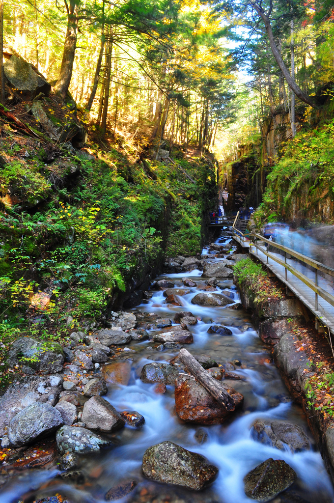 flume gorge, NH. One of my best work, taken with D5000 & kit lens. I had a hard time using the tripod because the walkway was so narrow so had to pretty much use it as a monopod.