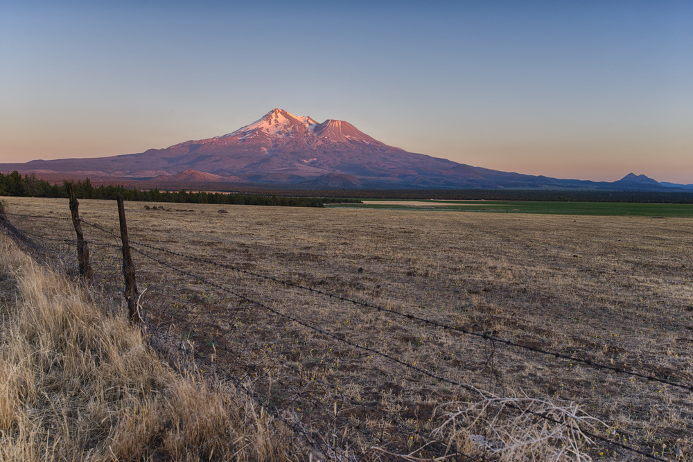 Mt Shasta Basking in gorgeous sunset light..