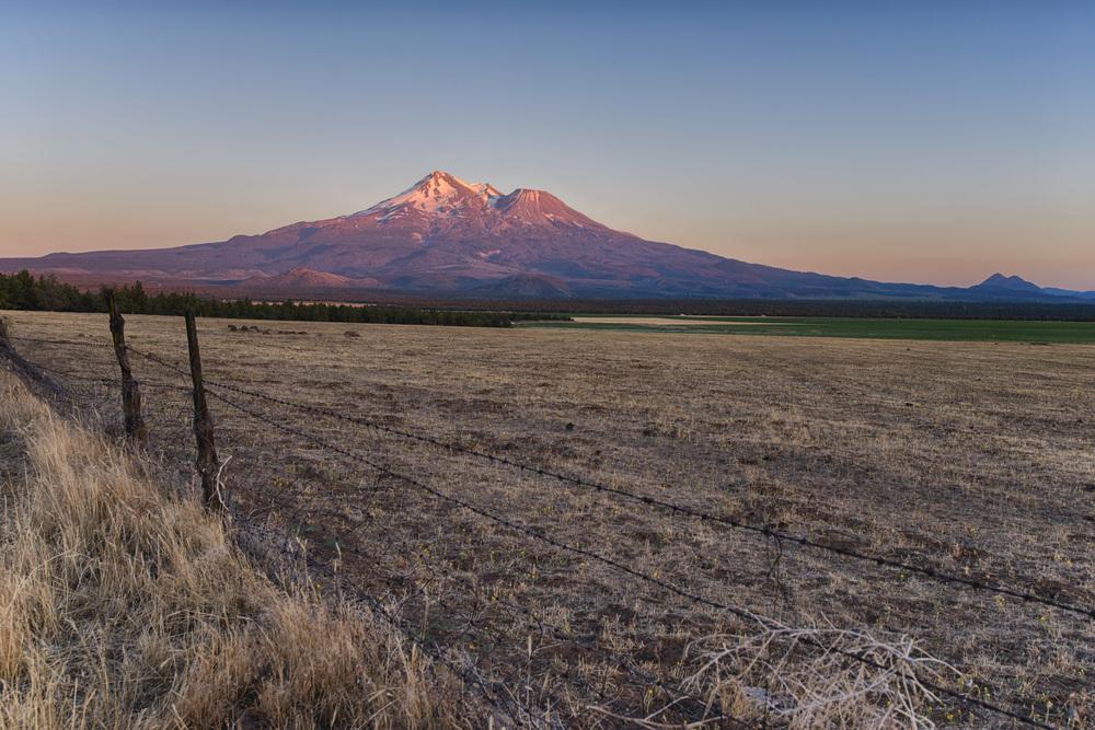 Mt Shasta Basking in gorgeous sunset light..