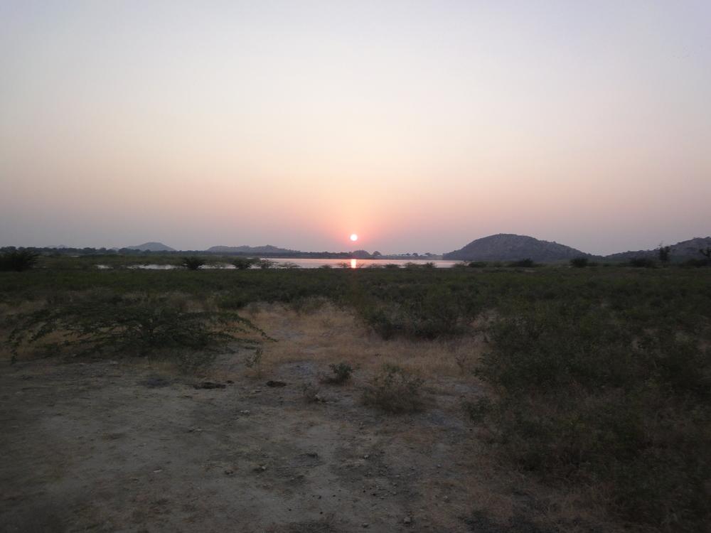 Tordi Garh wildlife sunset.JPG