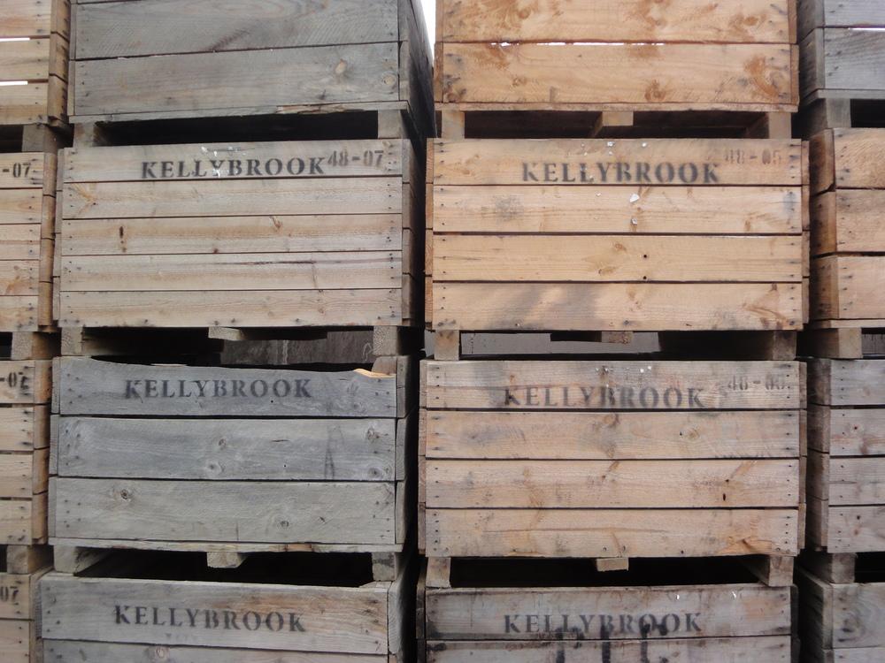 Kellybrook Cider Festival cider apples