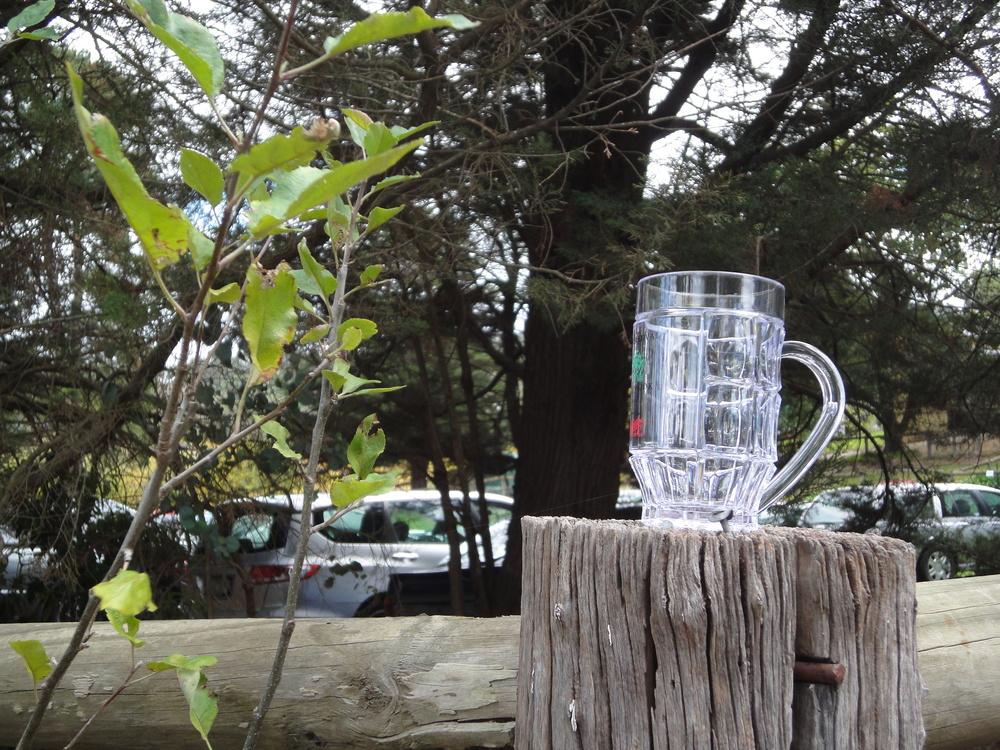 Kellybrook Cider Festival cider mug