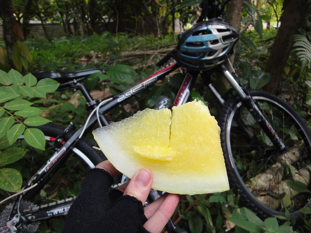 A well-earned snack during the bike ride.