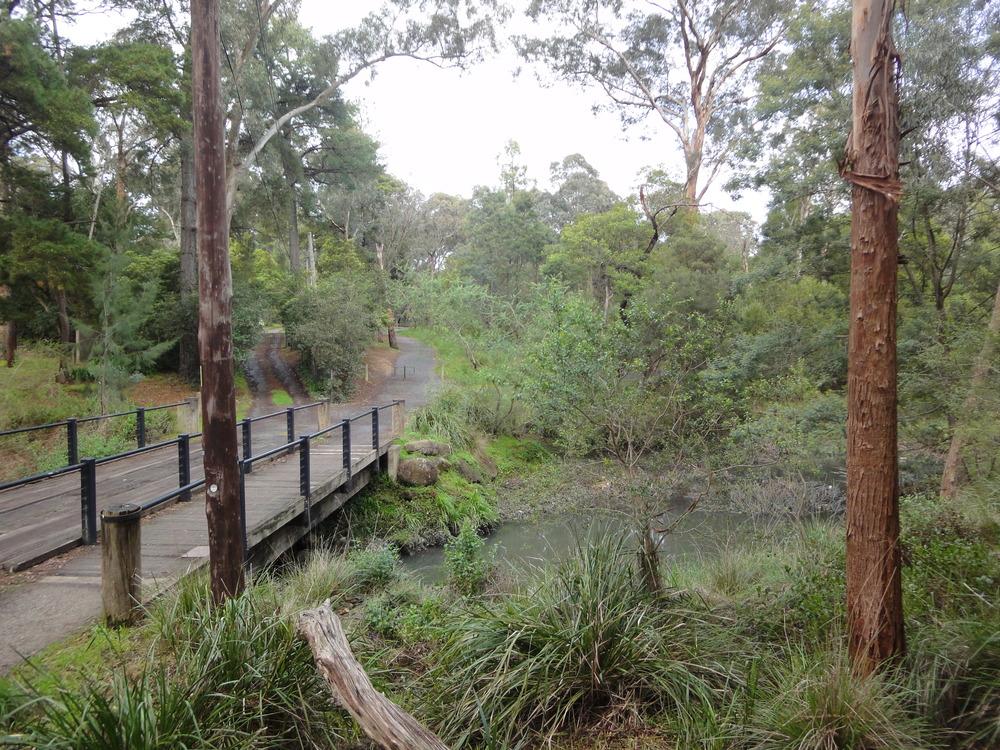Blackburn Lake Sanctuary