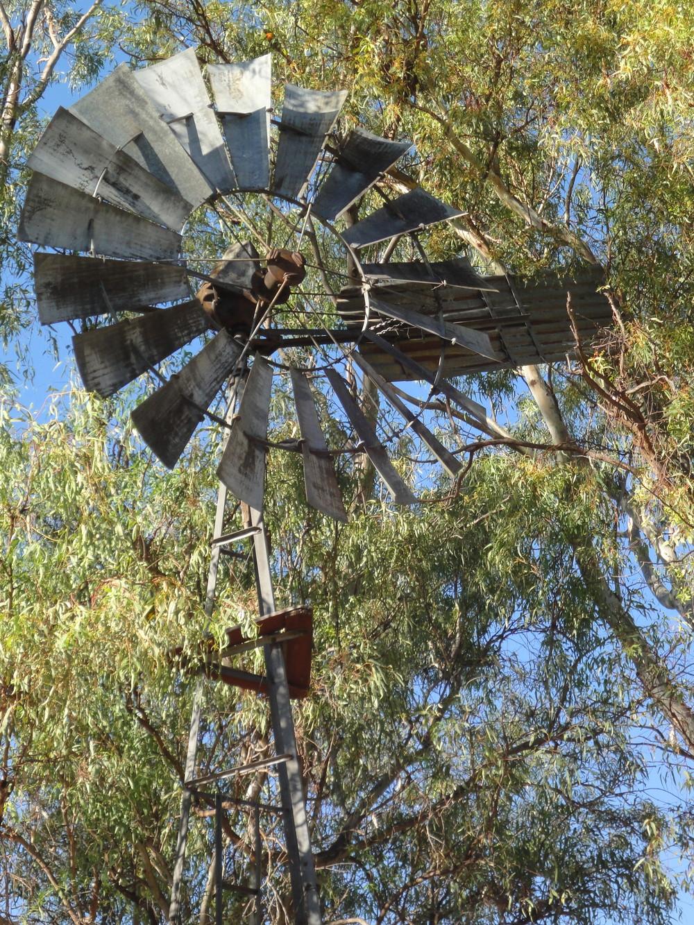 Tamworth country music travel australia