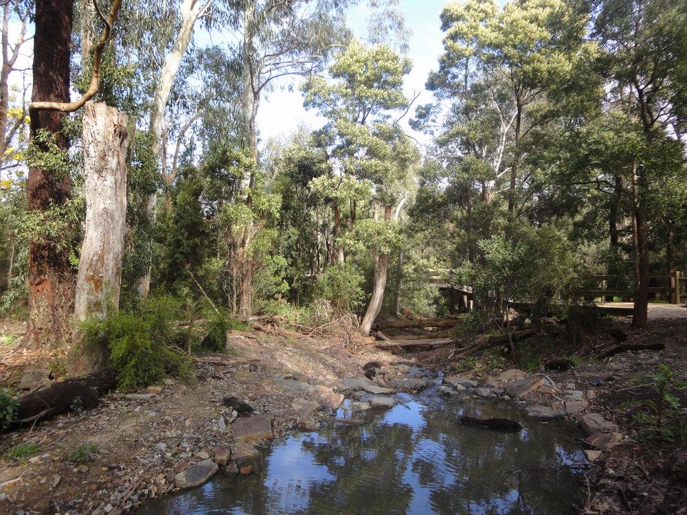 Nature walking bushwalking Melbourne backpacking tips food vegan