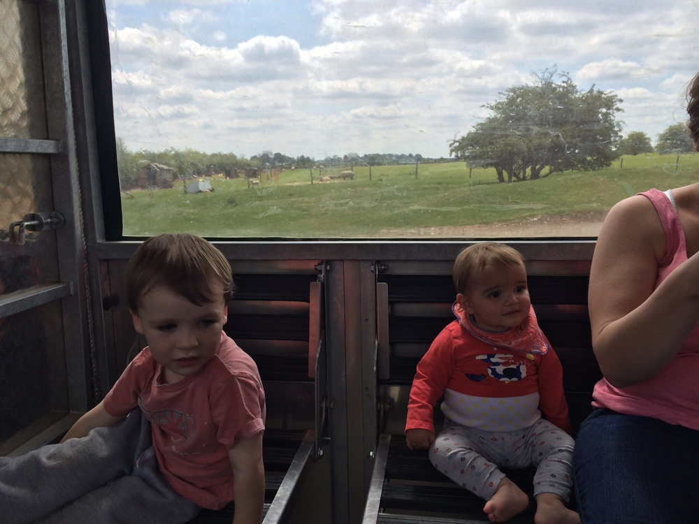 The tractor ride