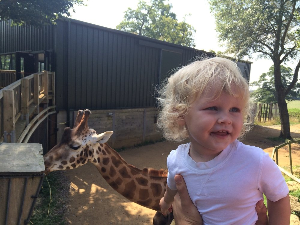 Cotswold Wildlife Park Zoo visit