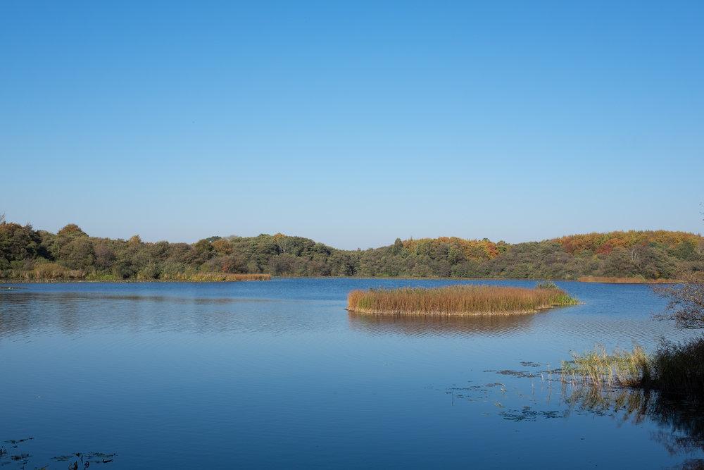 Svaneholmssøen.