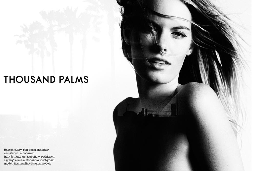 thousand palms2.jpg
