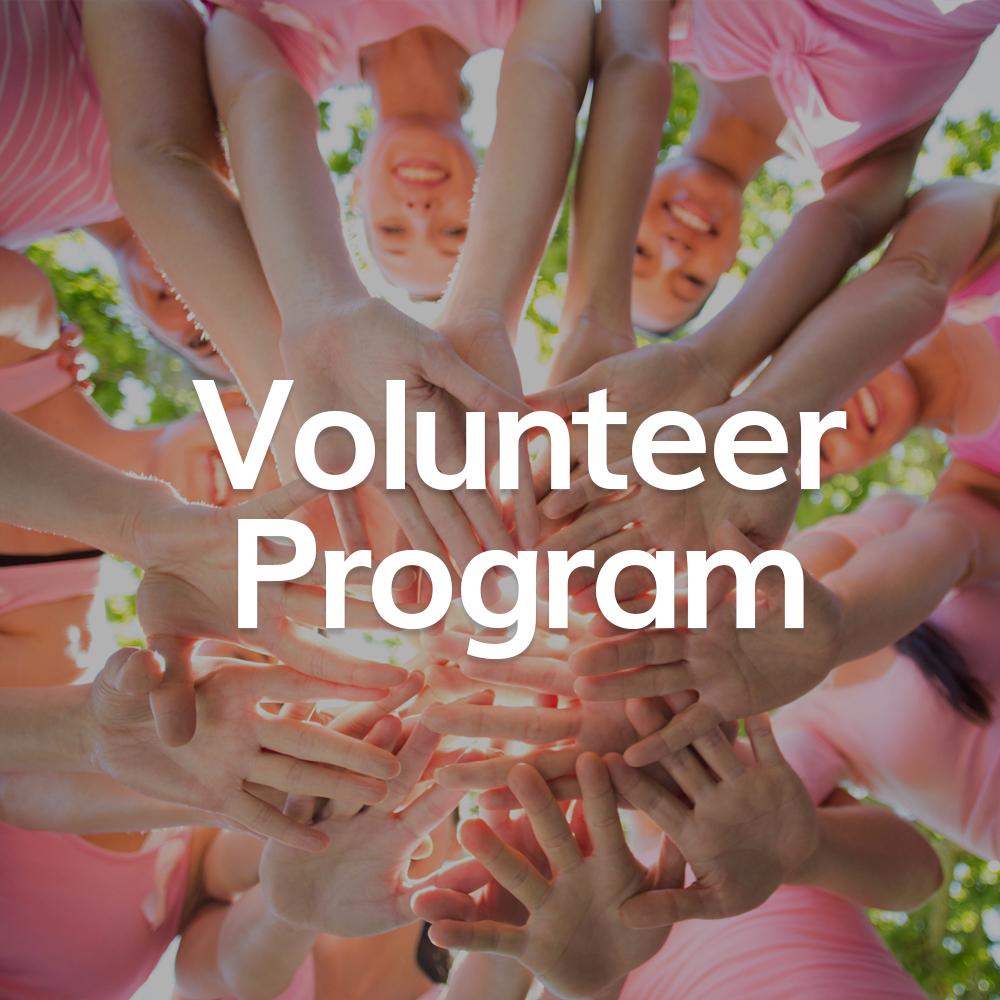 Icon Volunteer Program.jpg