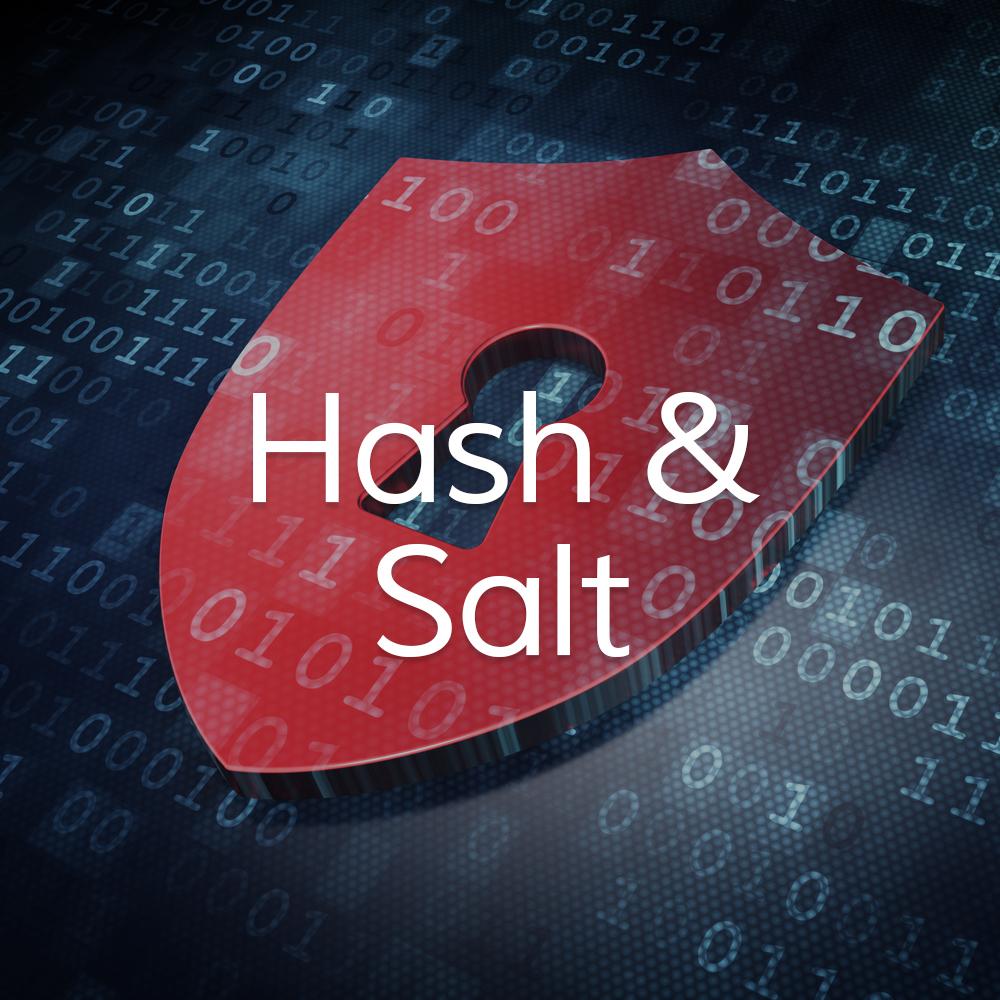 Hash-and-Salt.jpg